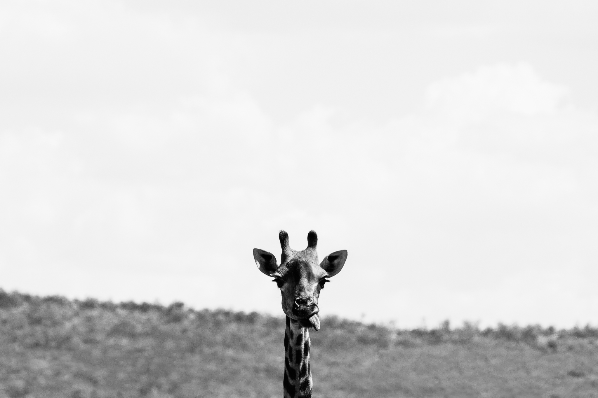 Melissa_Findley-SouthAfrica-Blog-26.jpg