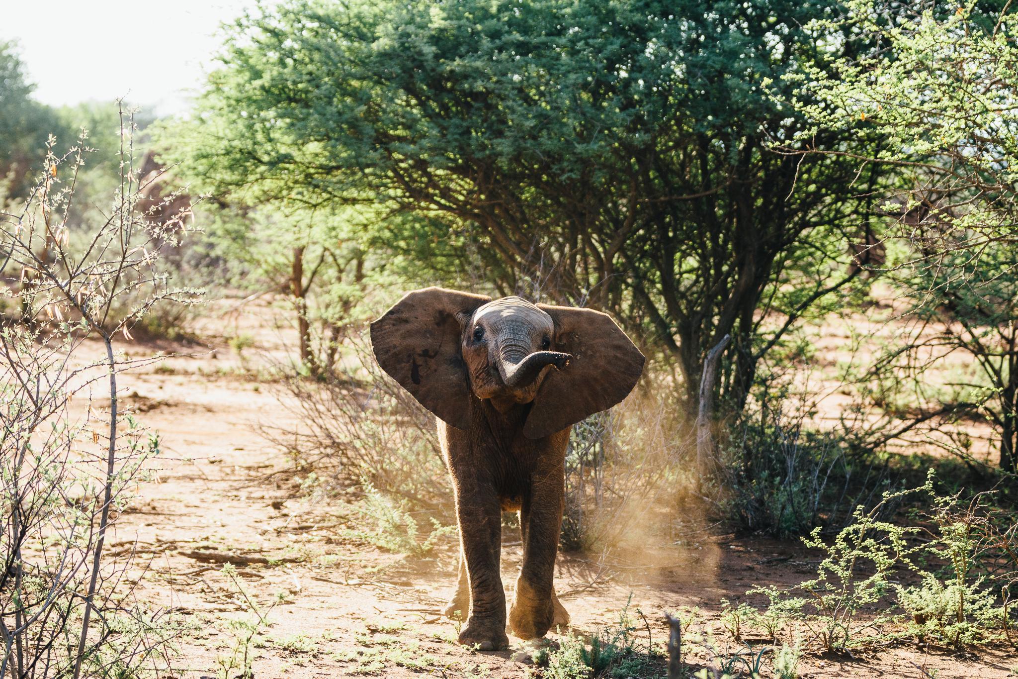 Melissa_Findley-SouthAfrica-Blog-29.jpg