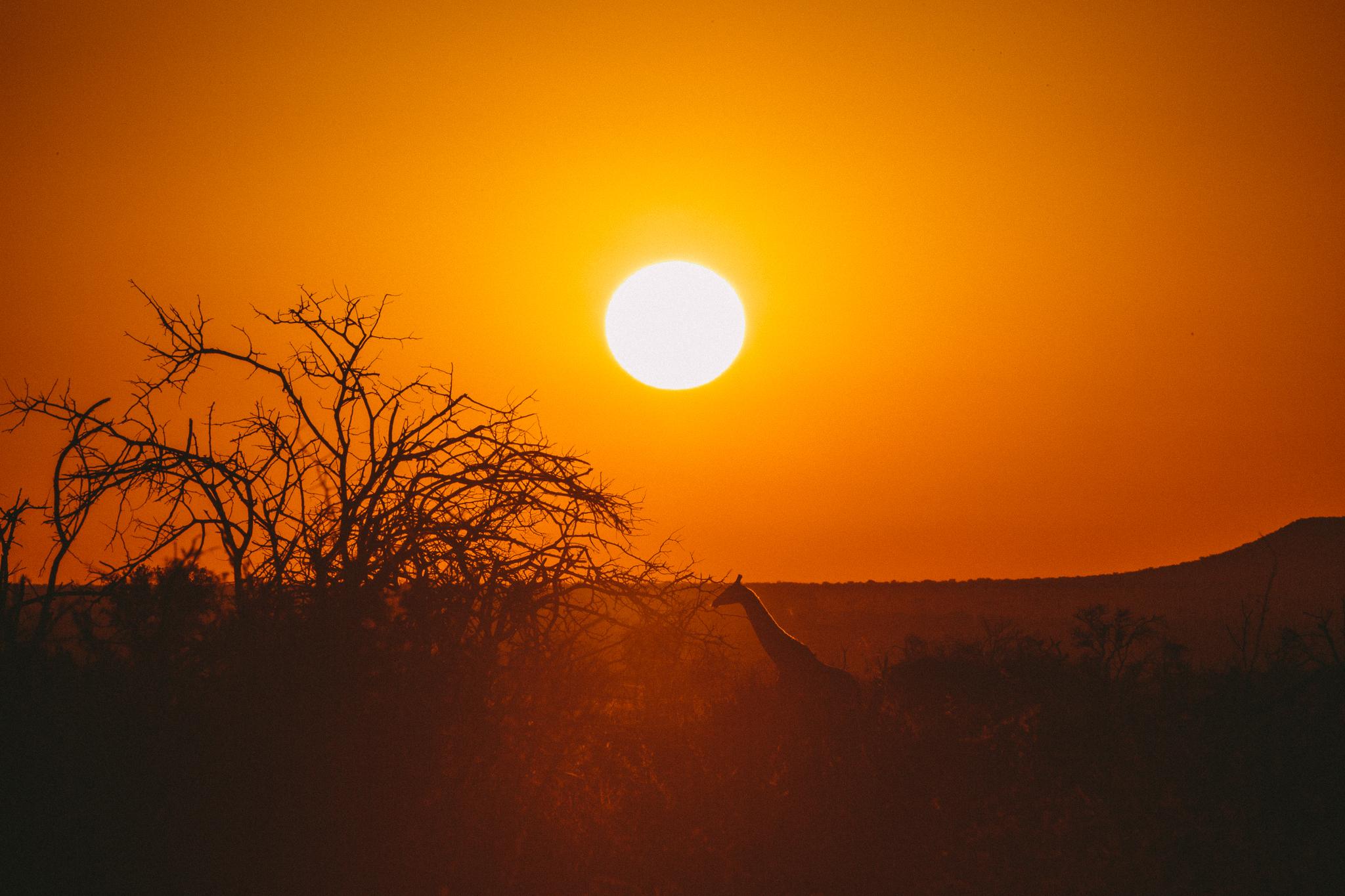 Melissa_Findley-SouthAfrica-Blog-34.jpg