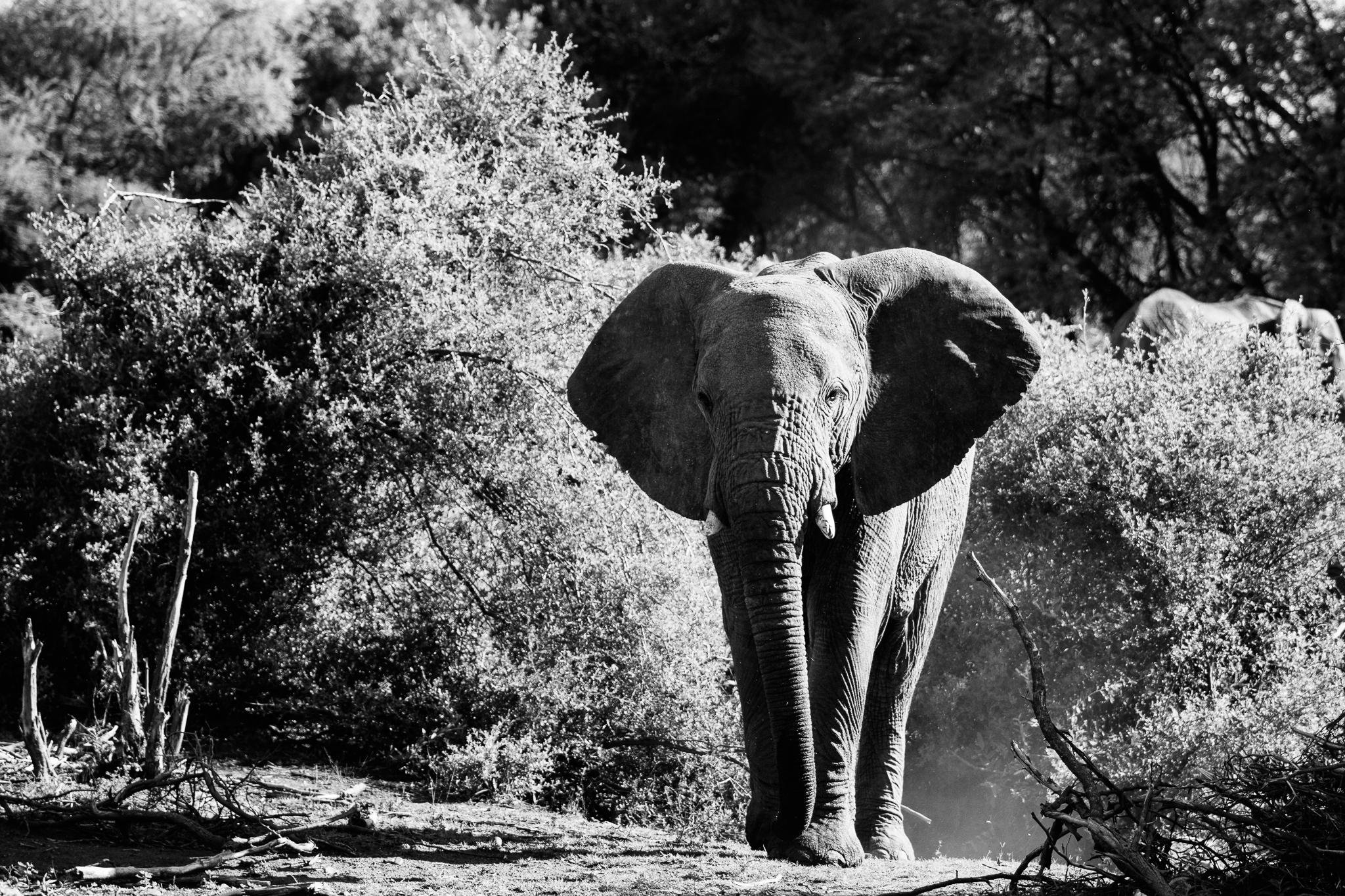 Melissa_Findley-SouthAfrica-Blog-38.jpg