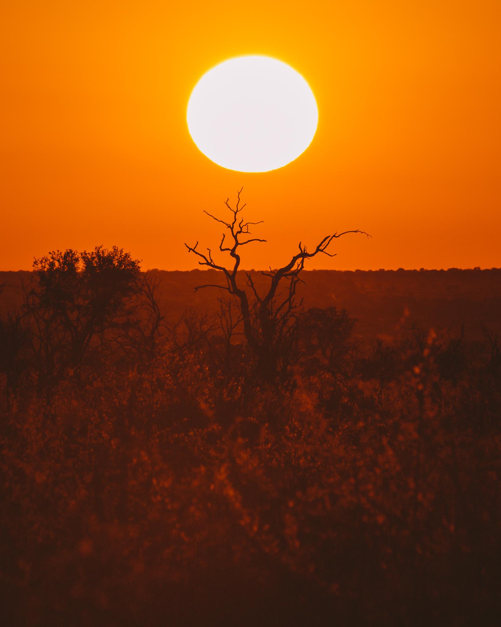 Melissa_Findley-SouthAfrica-Blog-52.jpg