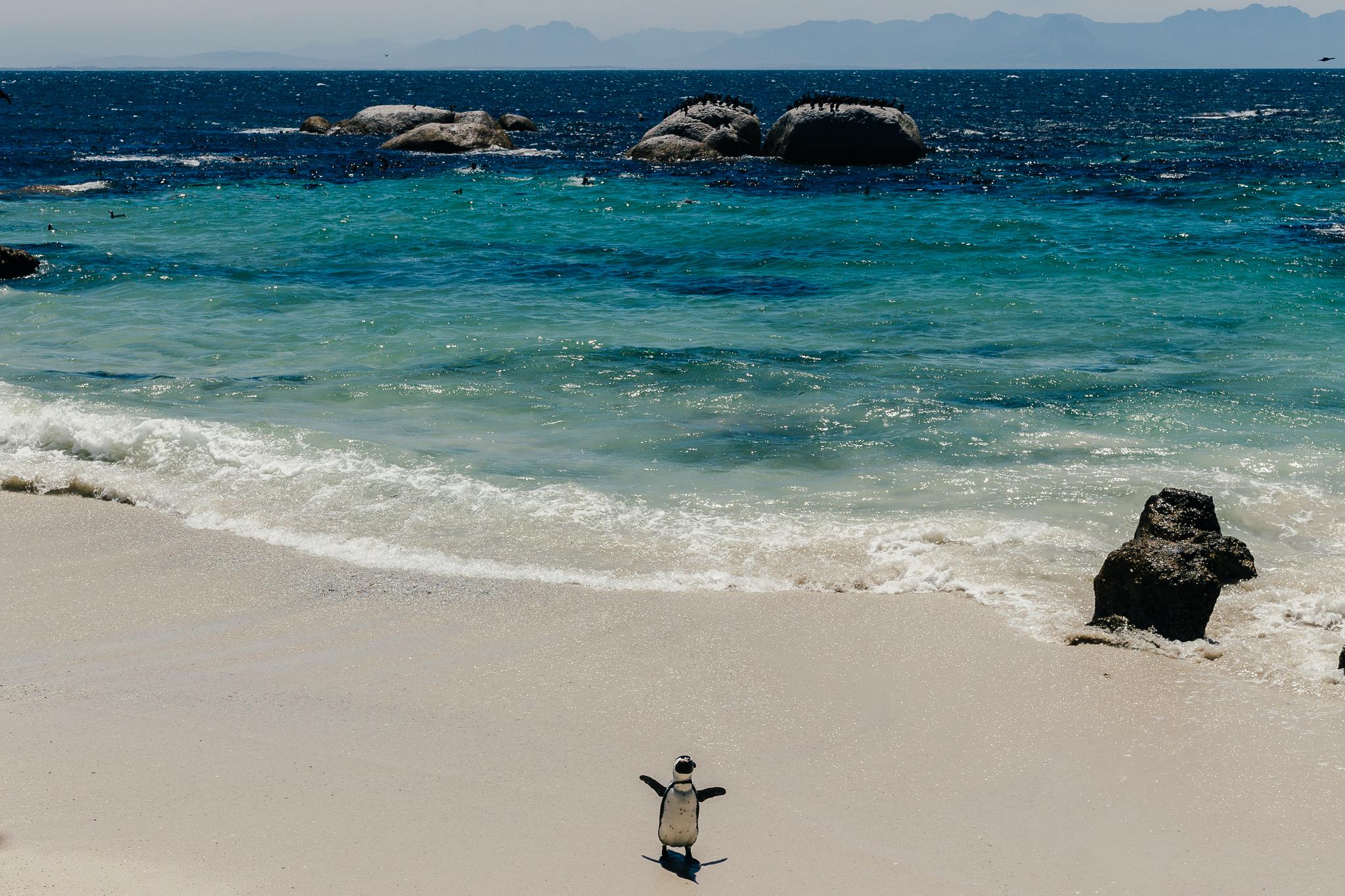 Melissa_Findley-SouthAfrica-Blog-58.jpg