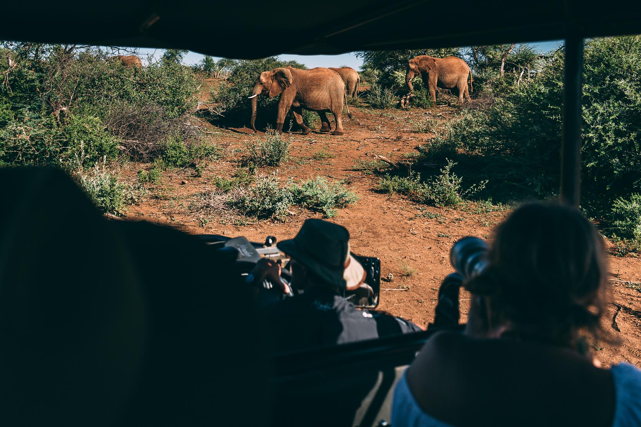 Melissa_Findley-SouthAfrica-Blog-91.jpg