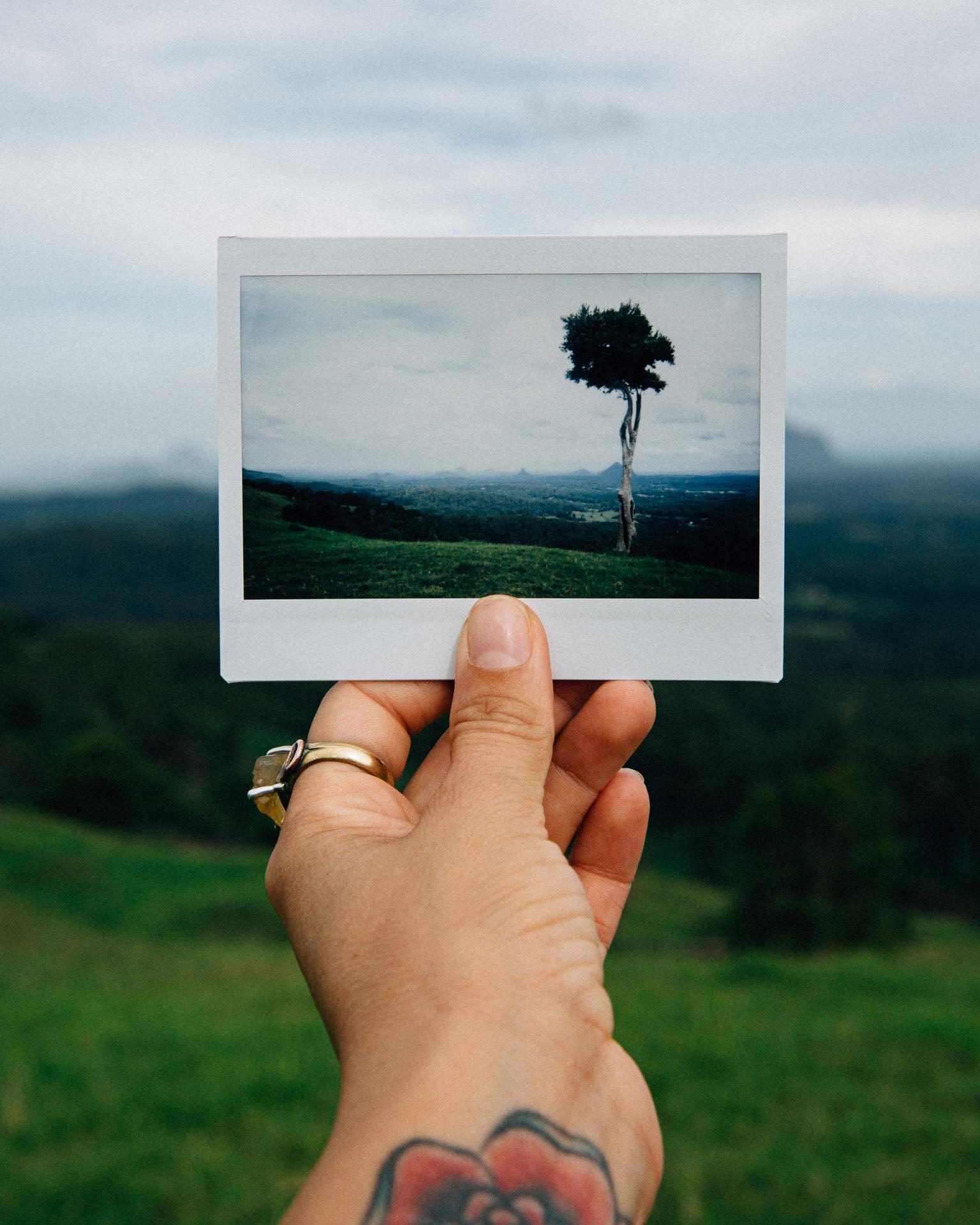 Melissa-Findley-Photographer-Portfolio-INSTANT-16.jpg