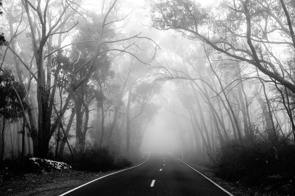 Melissa_Findley-The_Grampians-08.jpg