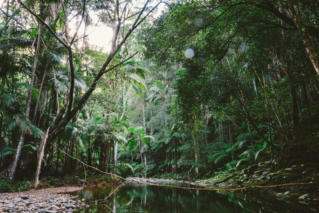 Melissa-Findley-Gold-Coast-QLD-18.jpg