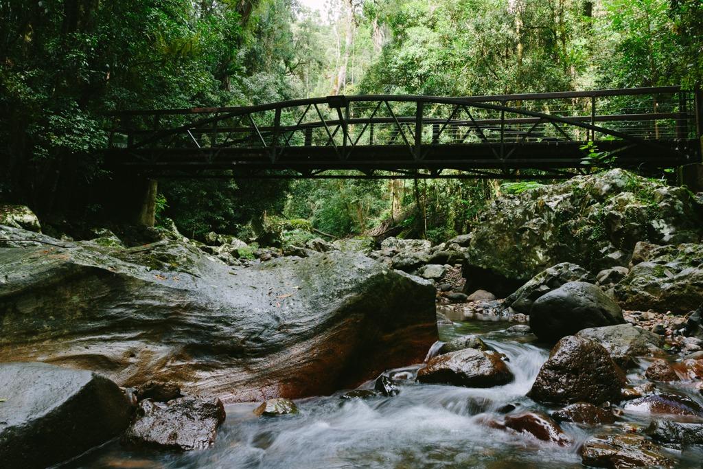 Melissa-Findley-Gold-Coast-QLD-30.jpg
