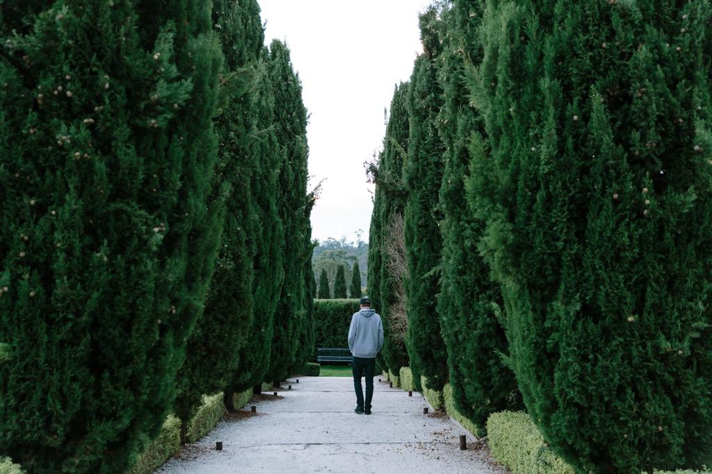 Melissa-Findley-Peppers-Mineral-Springs-10.jpg