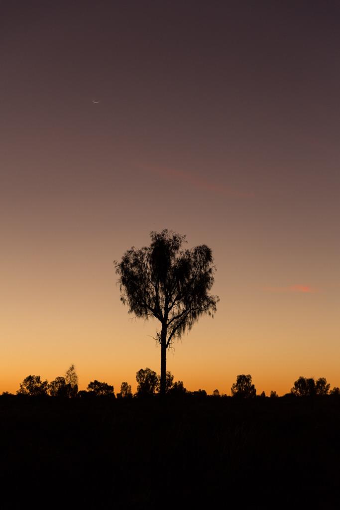 Melissa-Findley-Red-Centre-Uluru-16.jpg