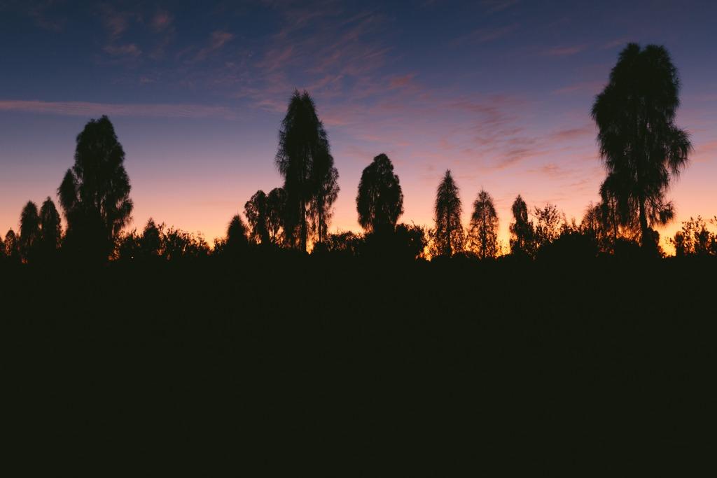 Melissa-Findley-Red-Centre-Uluru-19.jpg