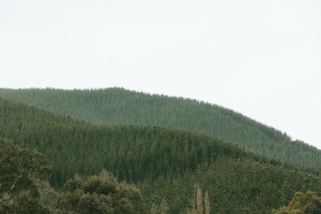 Melissa-Findley-Peppers-Rundells-Alpine-Lodge-01.jpg