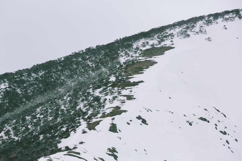 Melissa-Findley-Peppers-Rundells-Alpine-Lodge-16.jpg