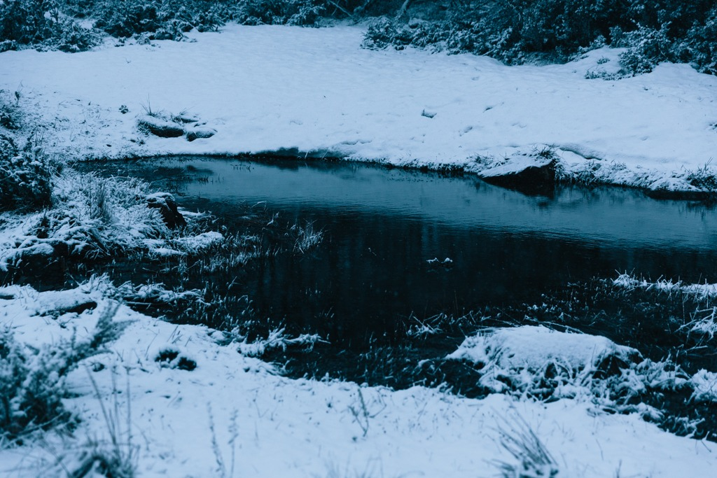 Melissa-Findley-Peppers-Rundells-Alpine-Lodge-38.jpg
