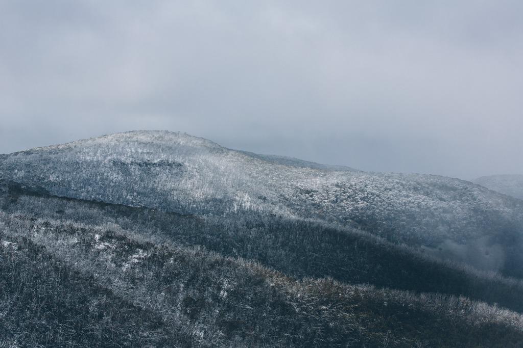 Melissa-Findley-Peppers-Rundells-Alpine-Lodge-49.jpg