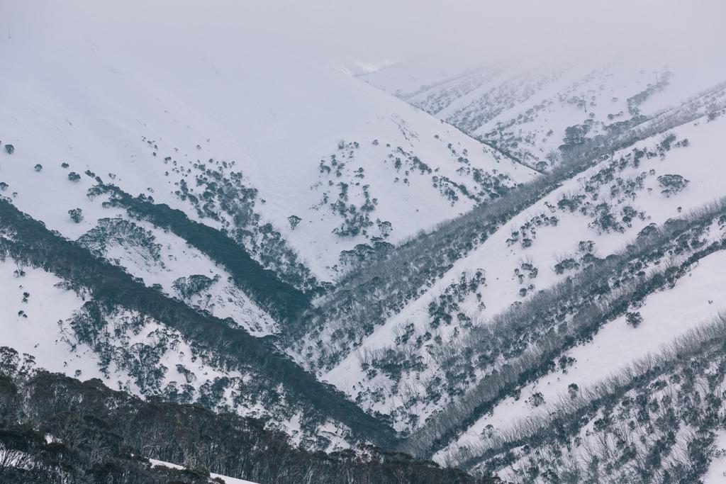 Melissa-Findley-Peppers-Rundells-Alpine-Lodge-65.jpg
