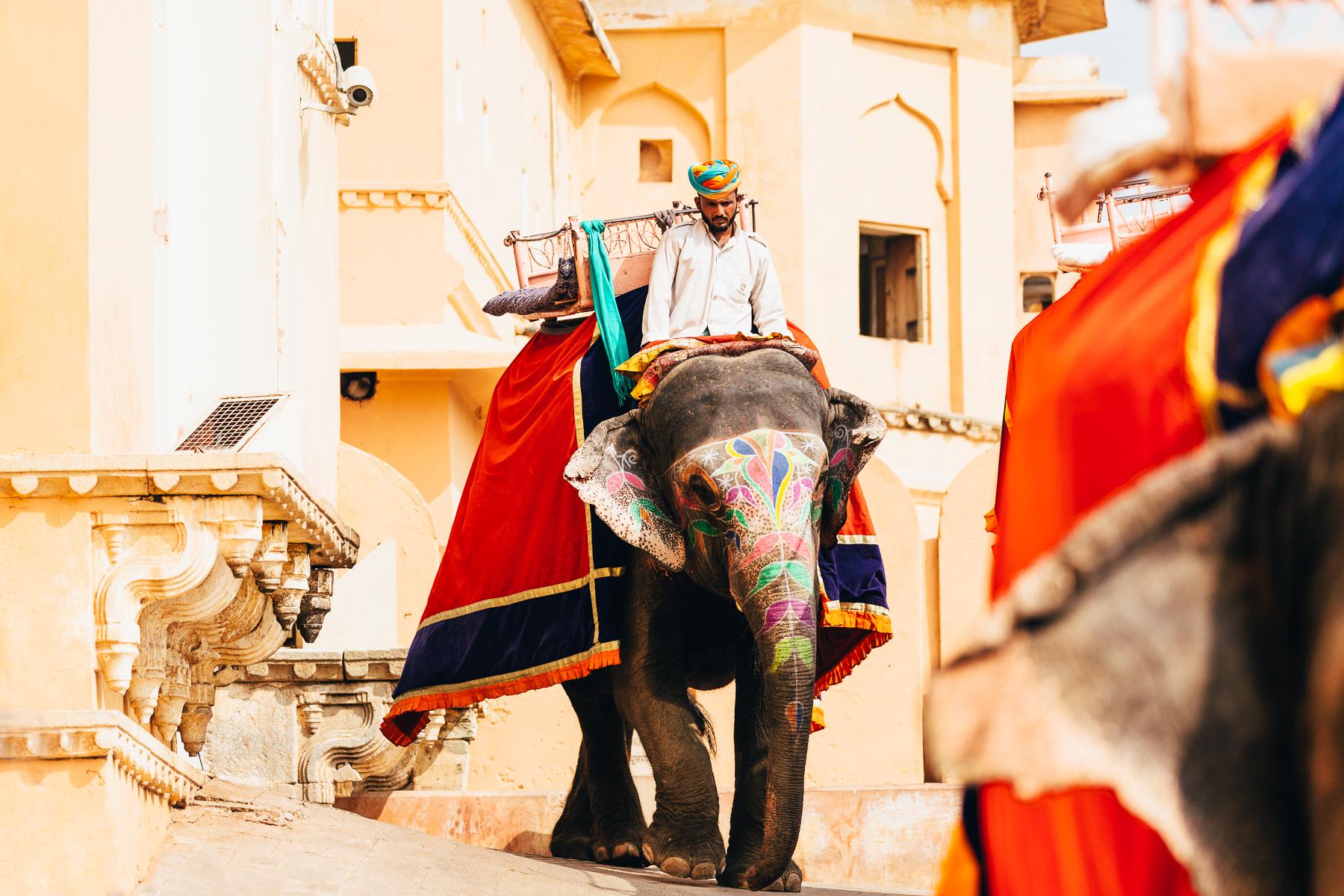 MelissaFindley-INDIA-Blog-09.jpg