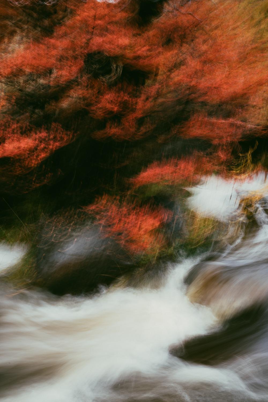 Melissa-Findley-PATAGONIA-Autumn-2018-34.jpg