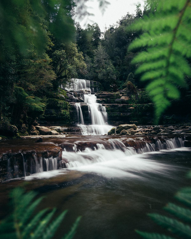 Melissa_Findley-Tasmania-Spring'18-Blog--05.jpg