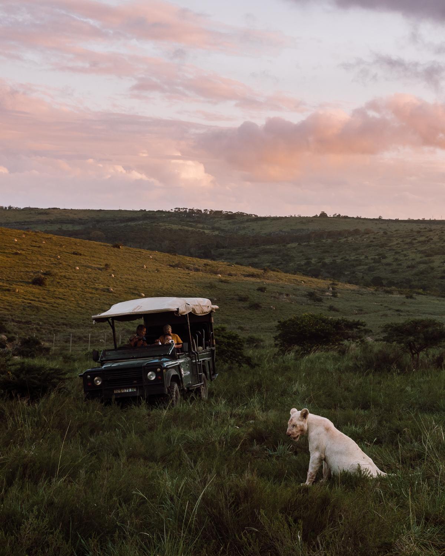 Melissa_Findley-SouthAfrica-Gadventures-BLOG--3.jpg