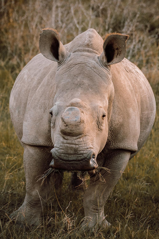 Melissa_Findley-SouthAfrica-Gadventures-BLOG--8.jpg