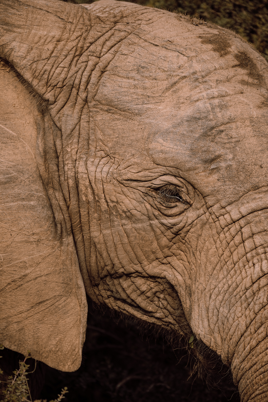 Melissa_Findley-SouthAfrica-Gadventures-BLOG--16.jpg