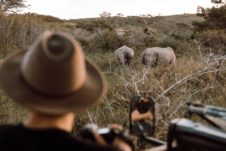 Sam Earp  observing White Rhinos.