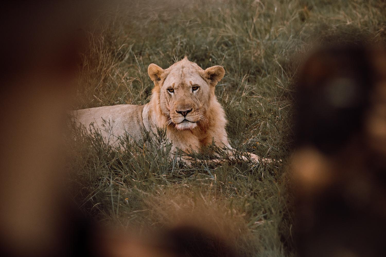 Melissa_Findley-SouthAfrica-Gadventures-BLOG--23.jpg