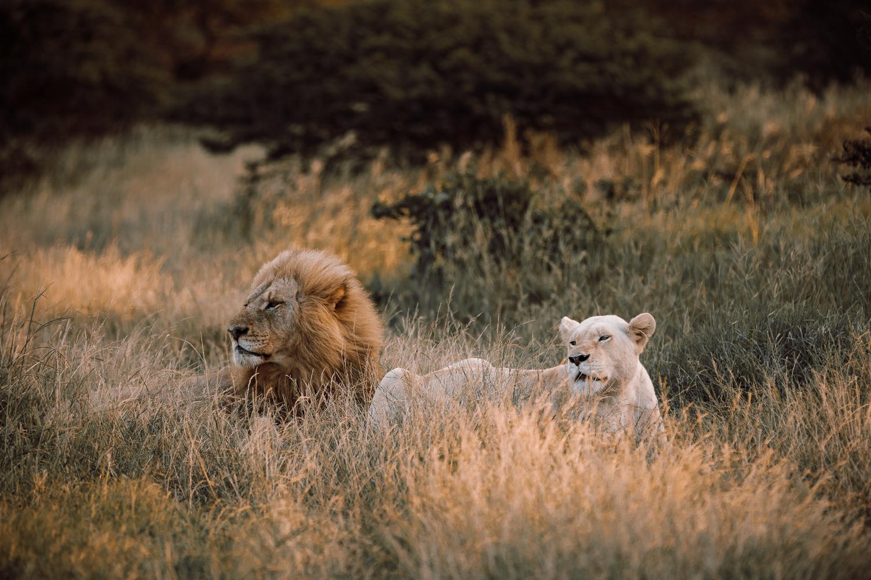 Melissa_Findley-SouthAfrica-Gadventures-BLOG--24.jpg