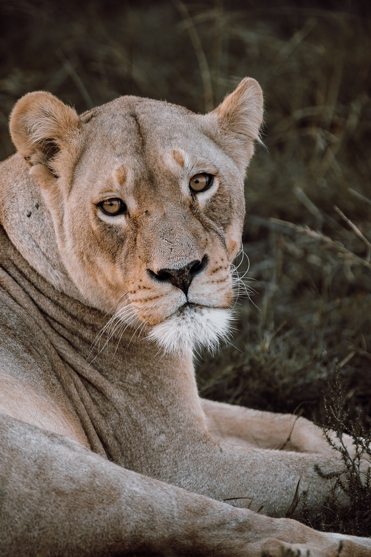 Melissa_Findley-SouthAfrica-Gadventures-BLOG--30.jpg