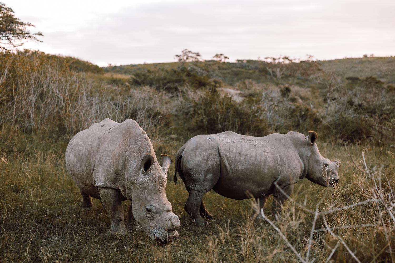 Melissa_Findley-SouthAfrica-Gadventures-BLOG--32.jpg