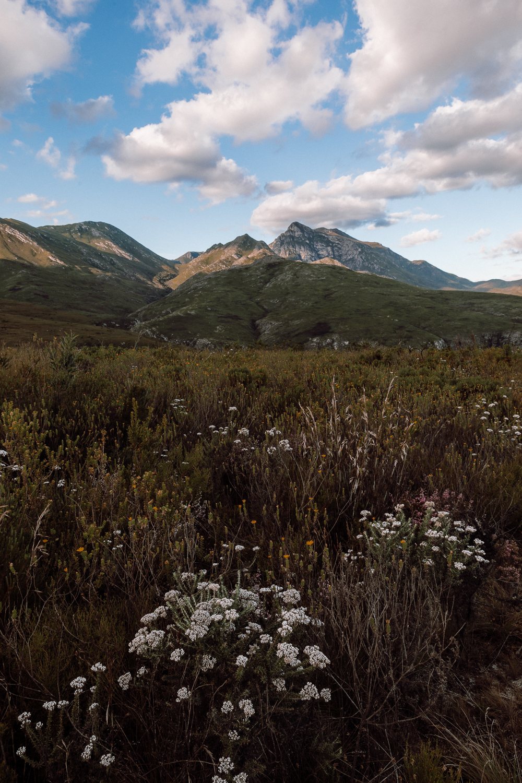 Melissa_Findley-SouthAfrica-Gadventures-BLOG--42.jpg