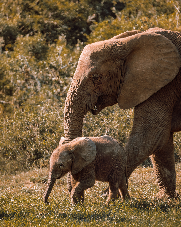Melissa_Findley-SouthAfrica-Gadventures-BLOG--14.jpg