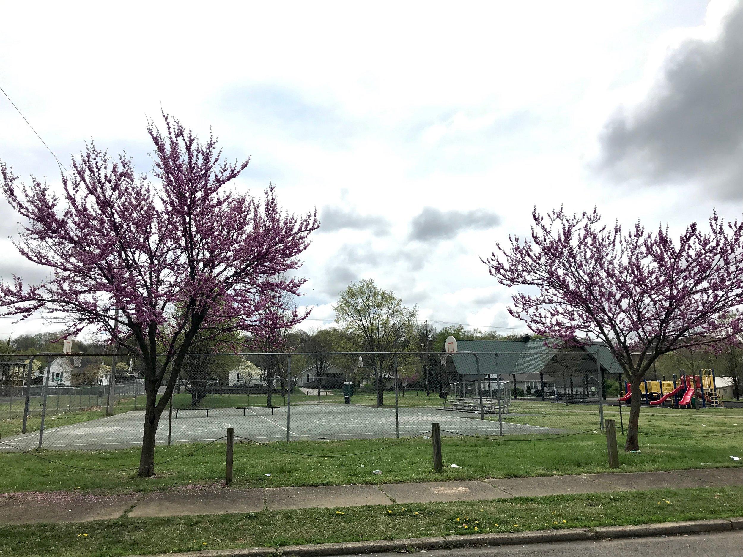 Lonsdale Park