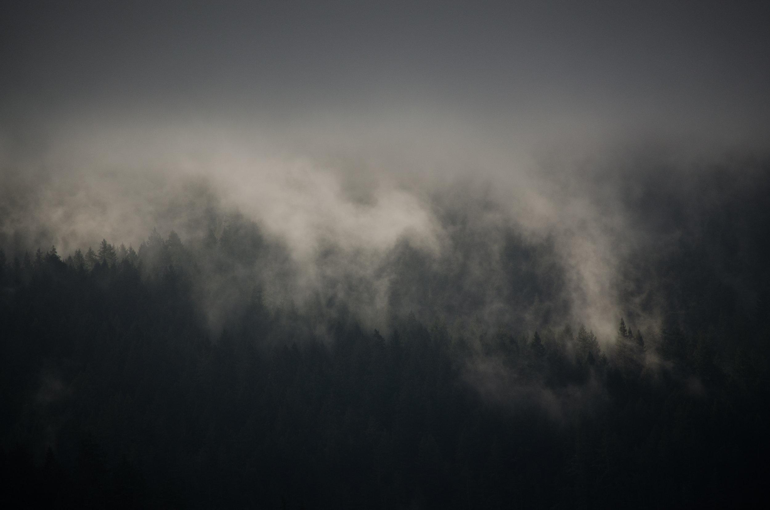 9d-Fog-2-3740.jpg