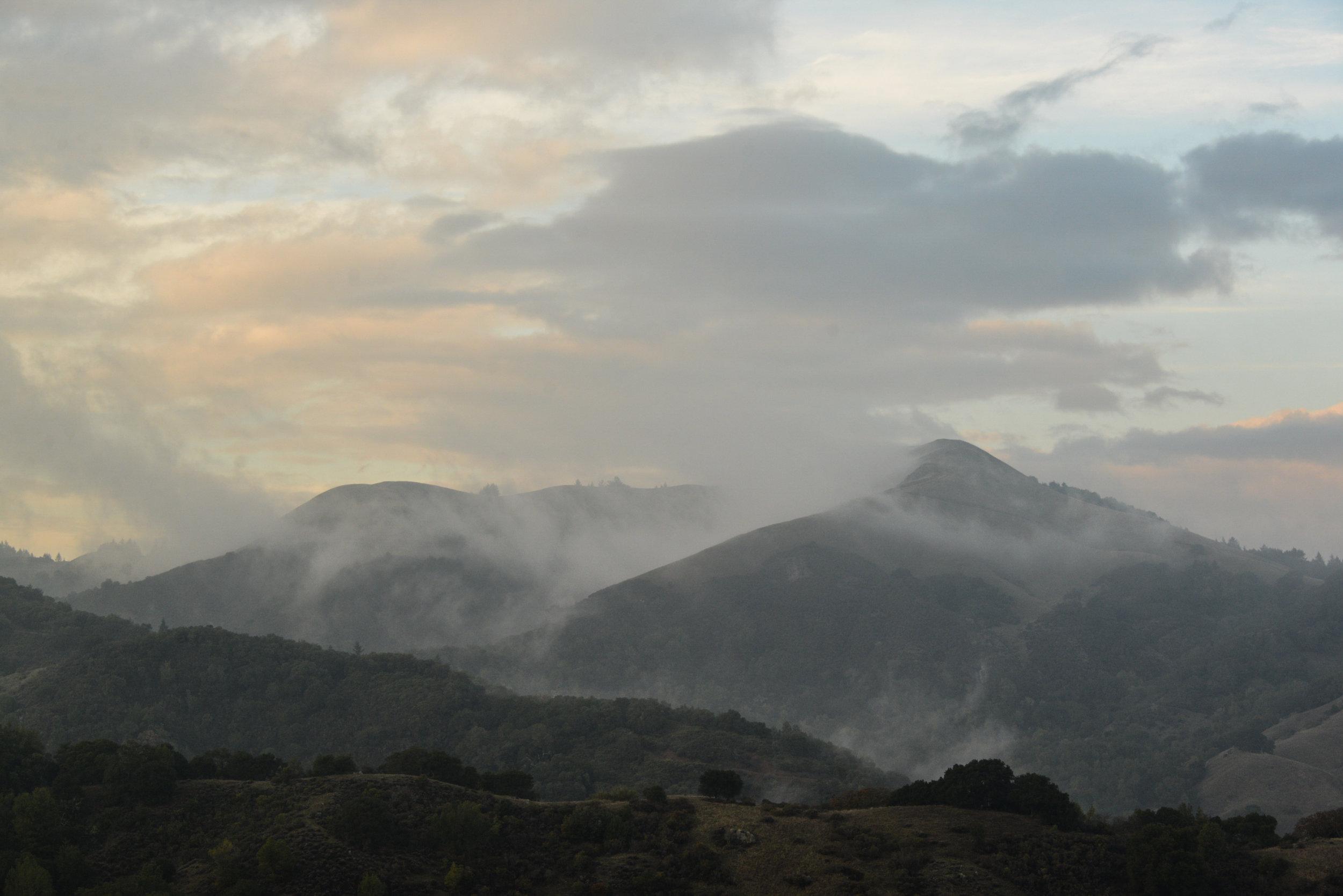 11a-Misty-hills-3-3710.jpg