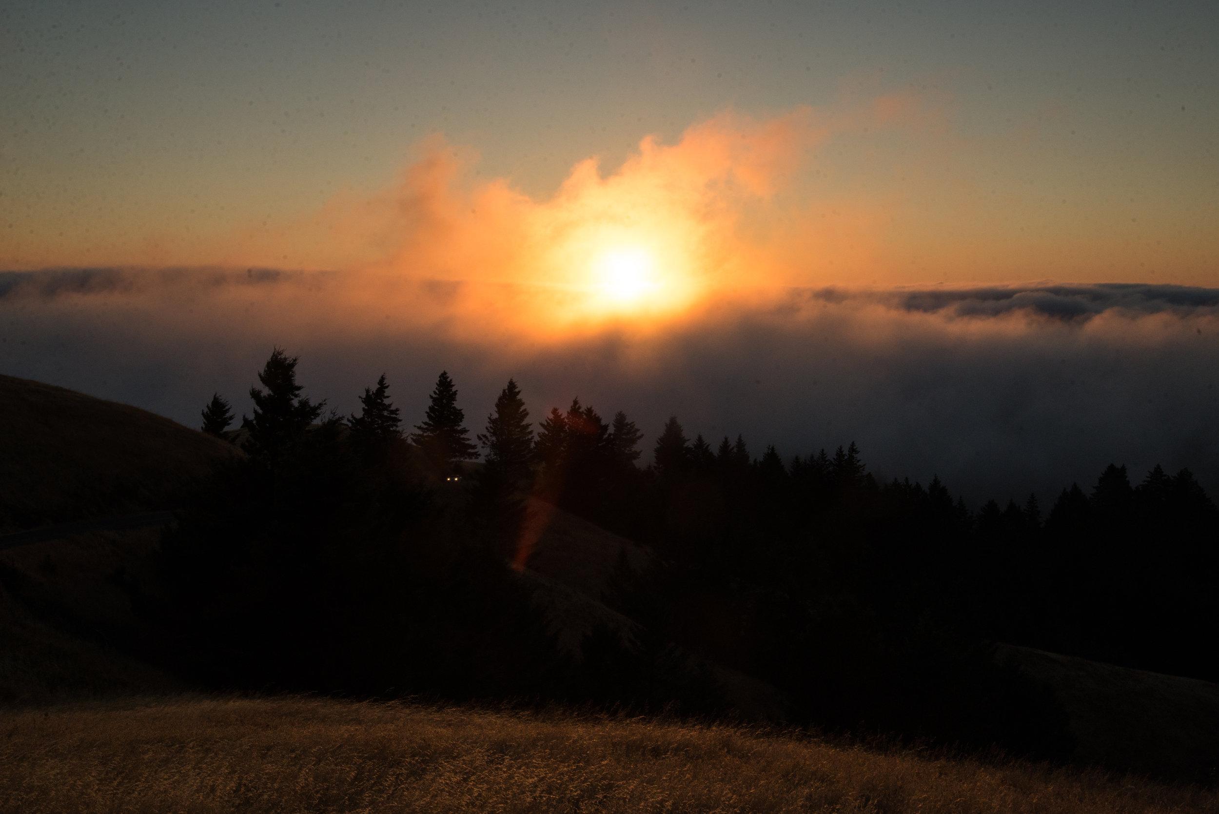 10b-Sun-mist-clean-up-2-4877.jpg