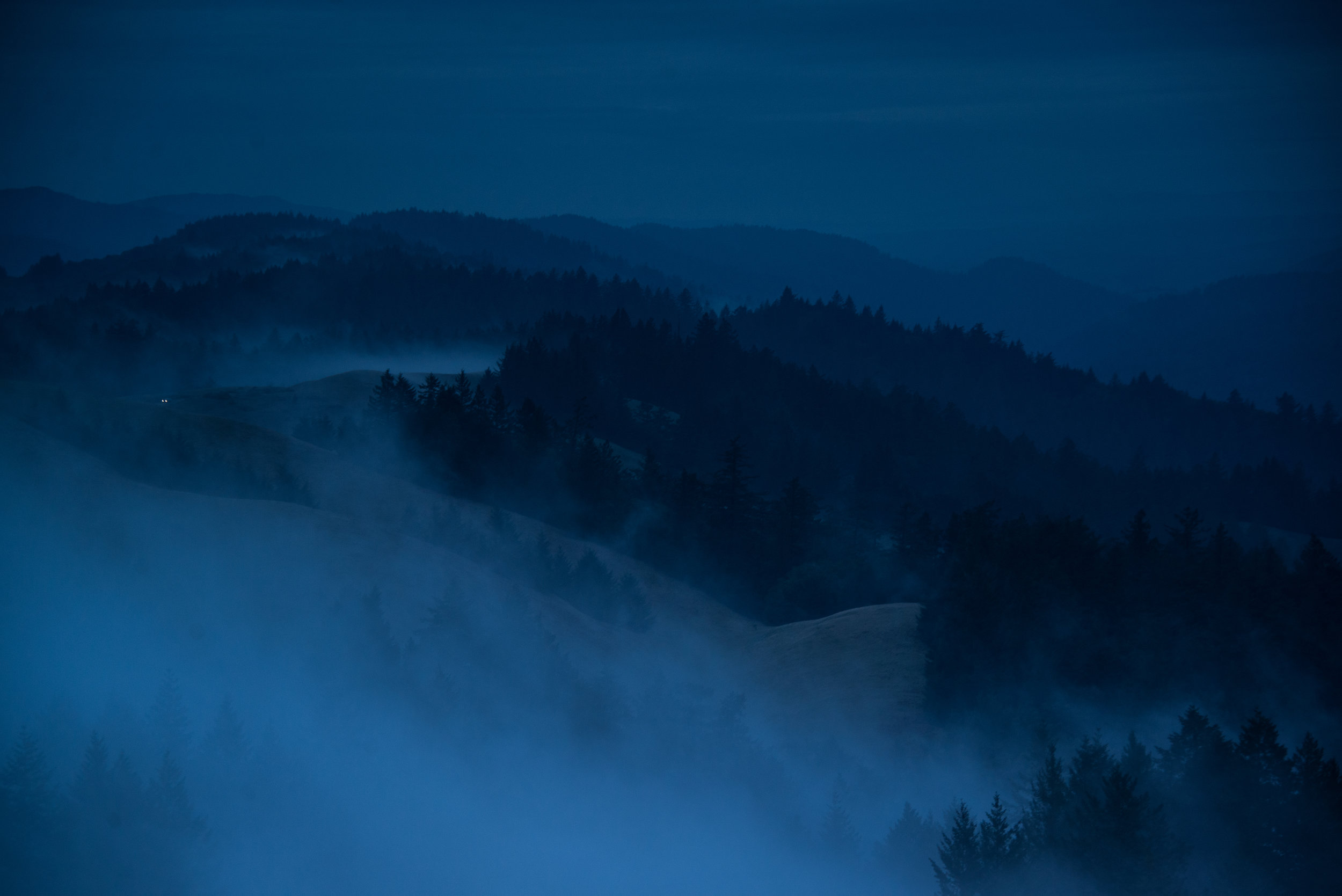 22-Blue-Bolinas-mist-3b-3364.jpg