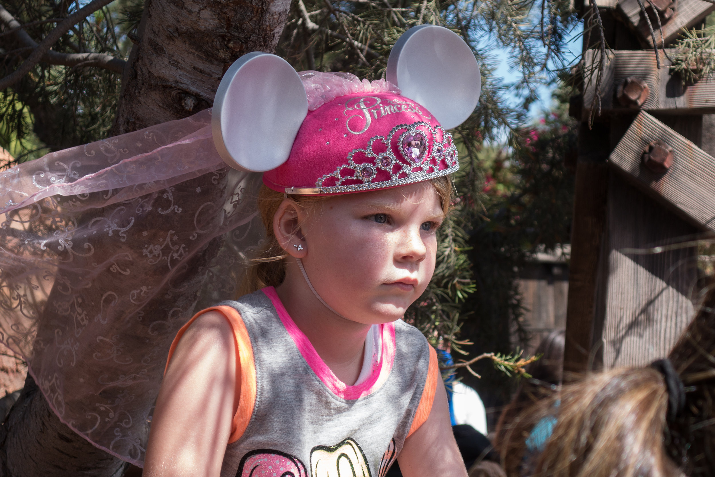 Disney-princess-hat-4-02091.jpg
