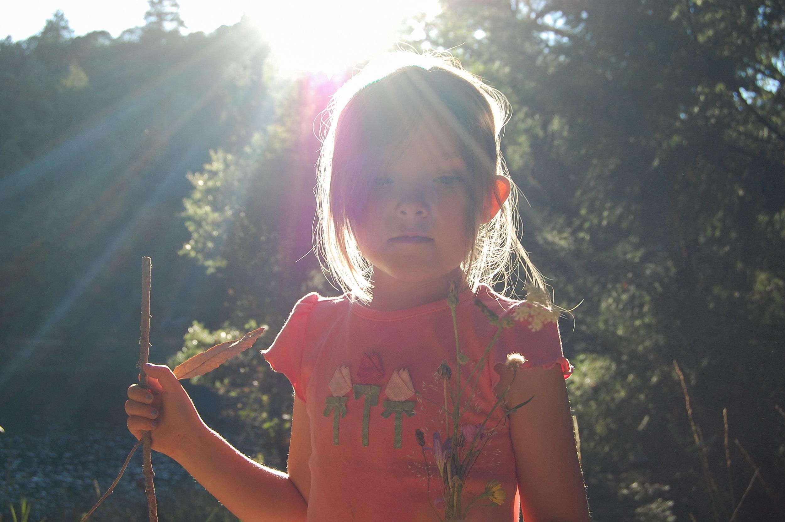 2-Polly-sunflare-2-0478.jpg