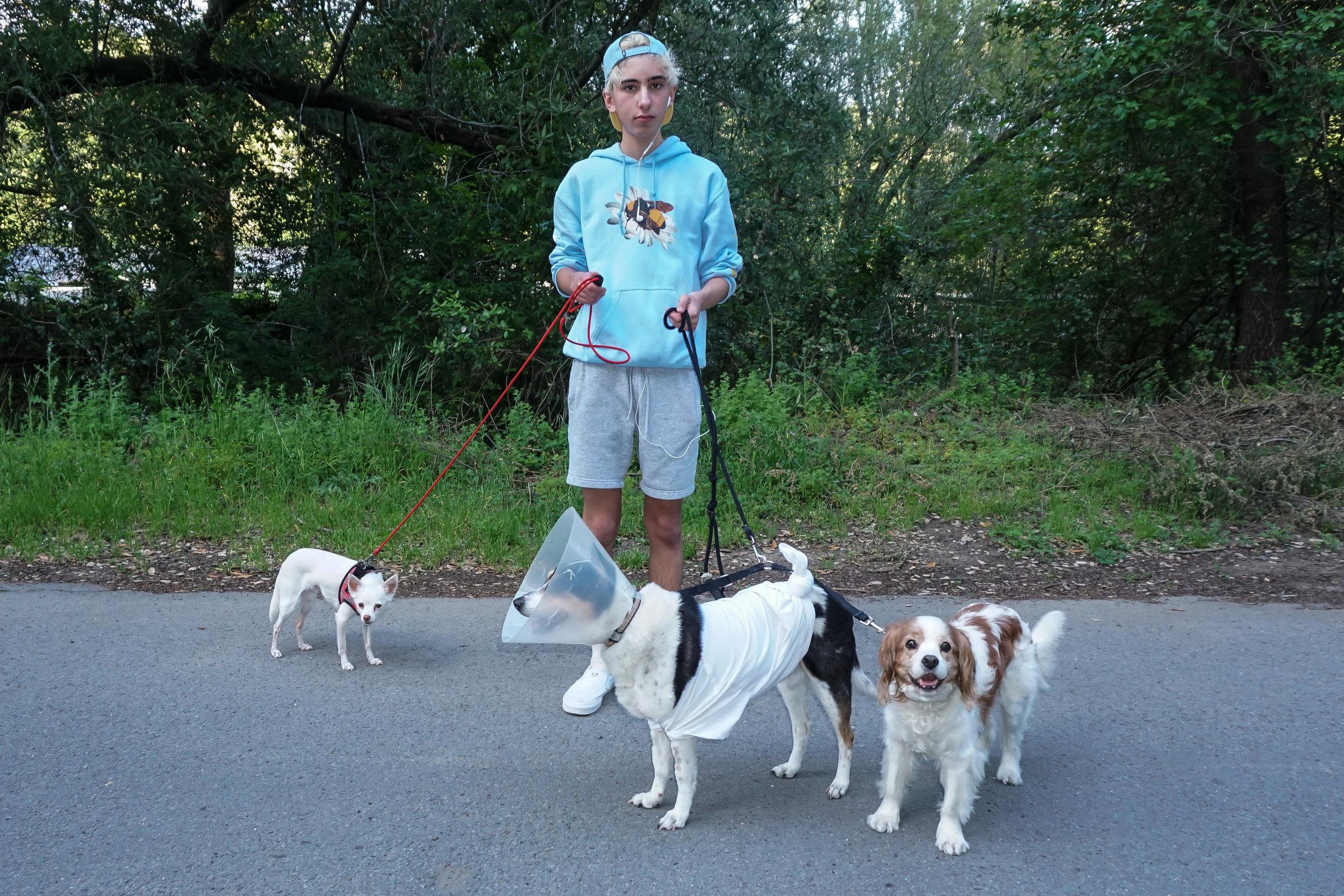 Dog-guy-6bbb-03678.jpg