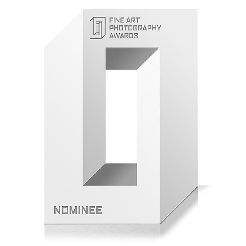 2017-sebastian-weiss-behance-white-sculptures-awards-fapa.jpg