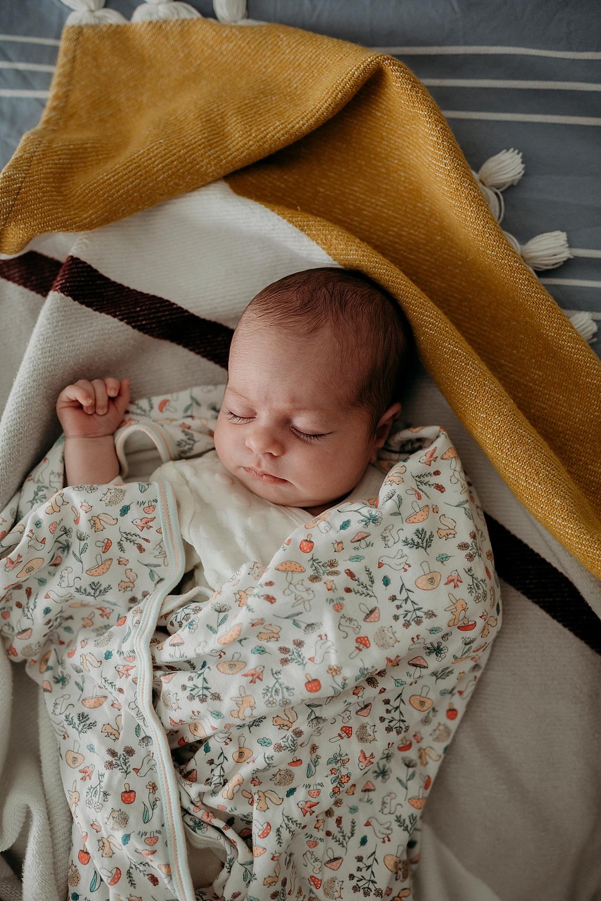Wollongong Newborn Photographer_0113.jpg