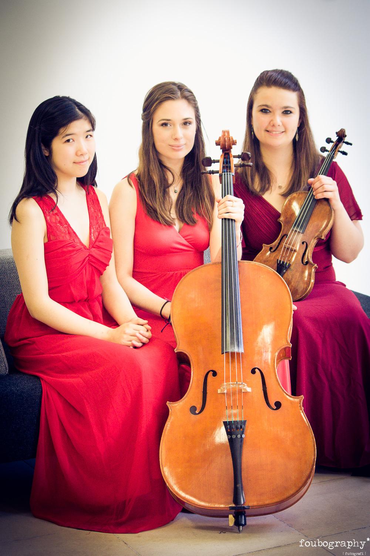 Violin16_3.jpg