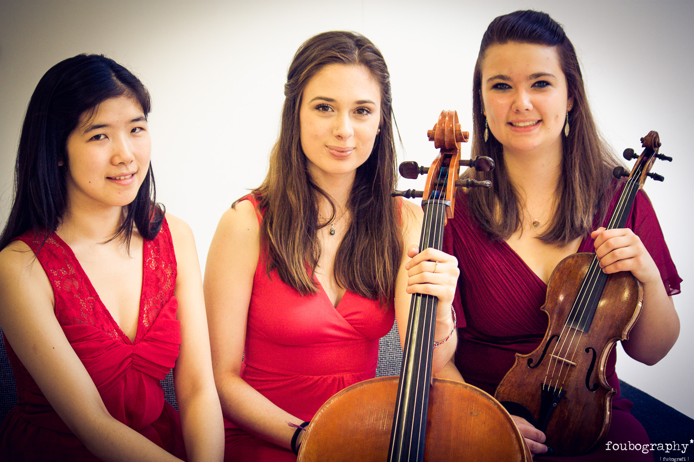 Violin16_7.jpg