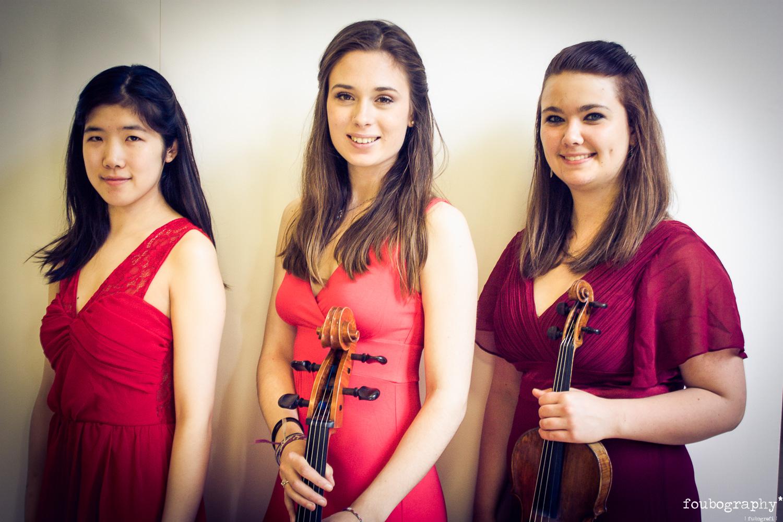 Violin16_10.jpg
