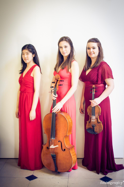 Violin16_9.jpg