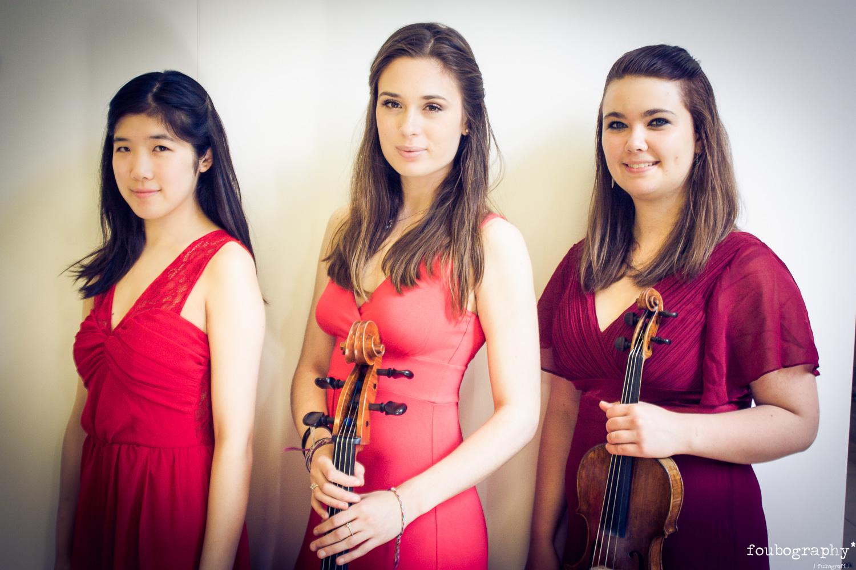 Violin16_11.jpg