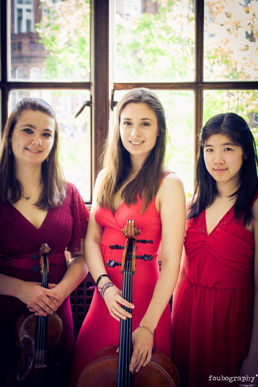 Violin16_14.jpg