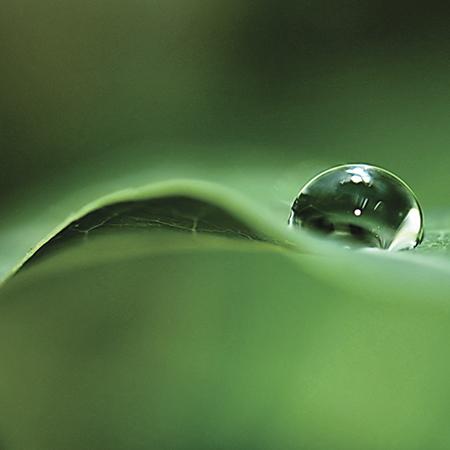 Sistema sustentable de riego