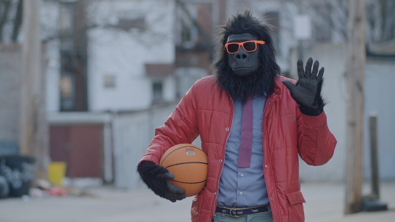 Sylvio: Gorilla my dreams